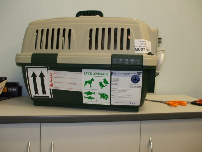 Dogtainers_Pet_Transport_Clipper_Cat_Cage_Plastic_Travel_Crate_Labelled